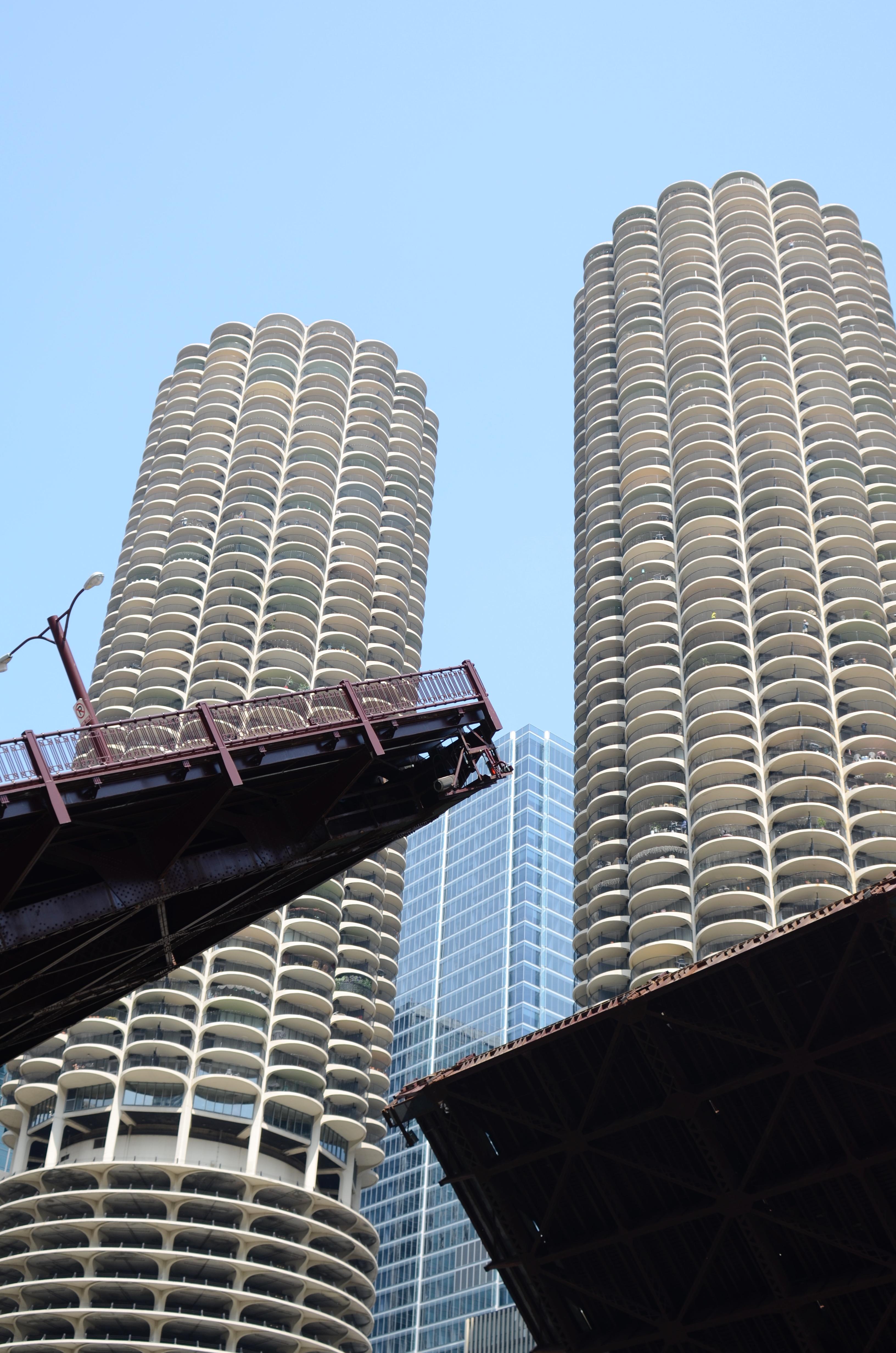 Chicagoland Vampires Spinoff!!!